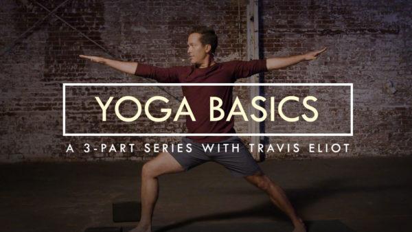 Yoga Basics Travis Eliot